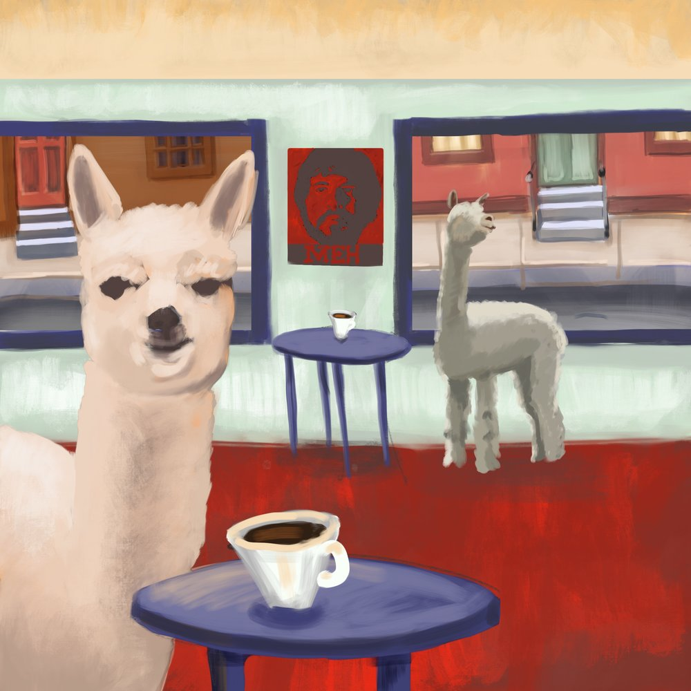Alpacas and coffee