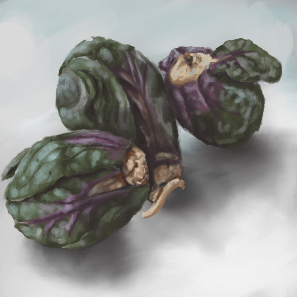 Brussels Sprouts Digital painting created with ProCreate