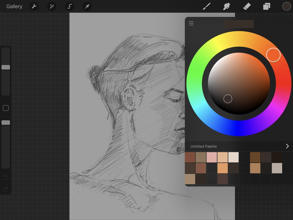 The color picker in Procreate - all the colors. Too many colors.